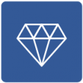 DOPG ERP Icone Metier Diamantaires